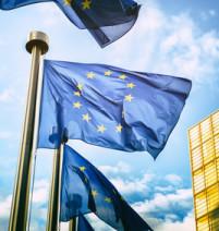 Dret de la UE, estudis i assistència tècnica